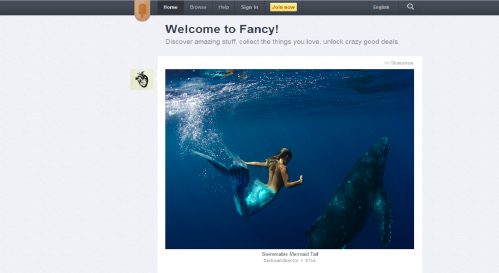 Screenshot from The Fancy's homepage